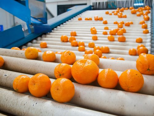 Citrus Industry Chains